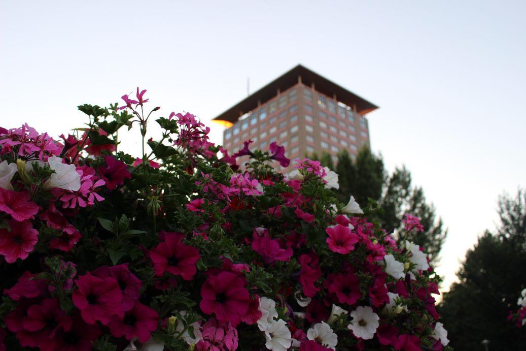 【オランダ】アムステルダムのお勧めホテル(ホテルオークラアムステルダム)