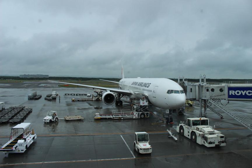 JAL国内線クラスJへの当日アップグレード方法を紹介する